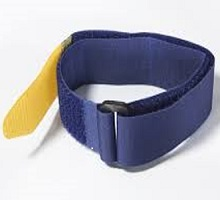 blue-yellow-strap-cat-220.jpg